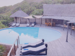 Uploaded ToMassinga Beach Lodge - pool area
