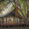 Tuli Safari Lodge - luxury tents